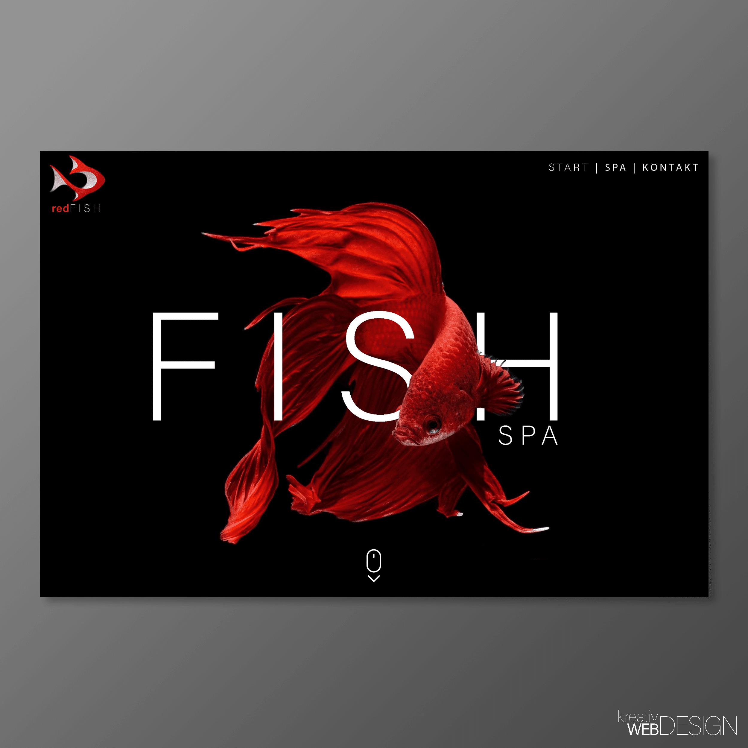 Webdesign Webseiten Aus Karlsruhe Kaufen 08 2017